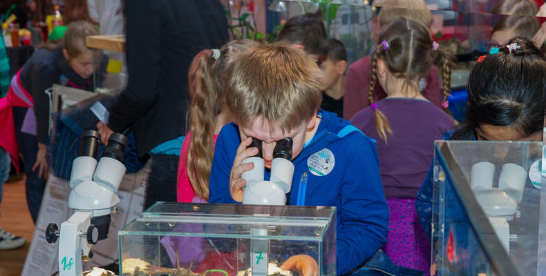 Science Days für Kinder - Mikroskop